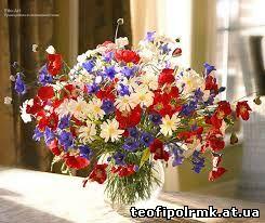 http://teofipolrmk.at.ua/081215/images45.jpg
